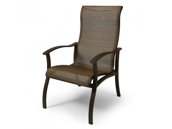 Albany Sling Dining Chair