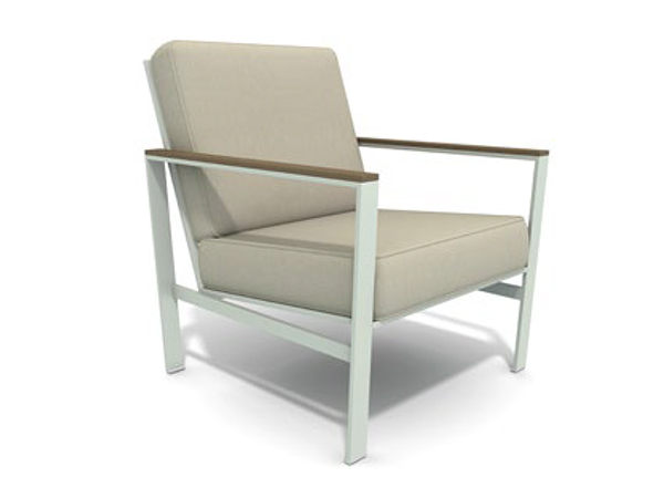 Echo Lounge Chair with Cushion